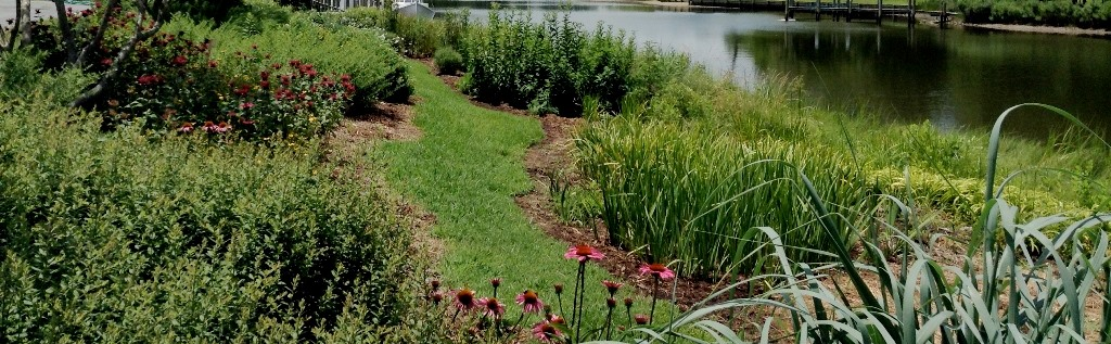 Reedville Shoreline Garden