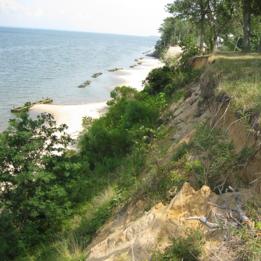 Badly eroded bank
