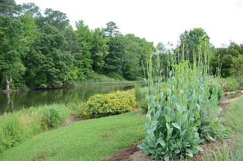 Reedville Fishermen's Museum Shoreline Garden